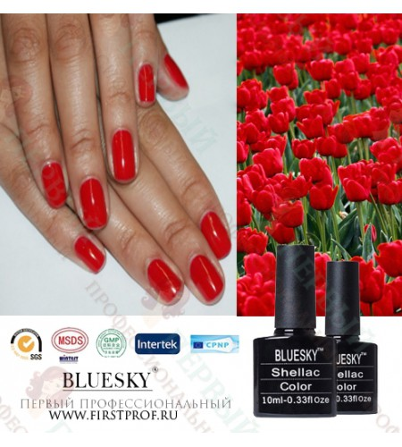 Bluesky Shellac 508 WildFire