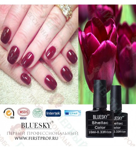 Bluesky Shellac 525 Decadence