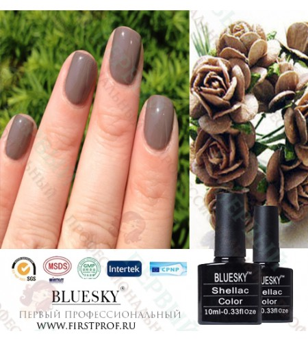 Bluesky Shellac 534 Rubble