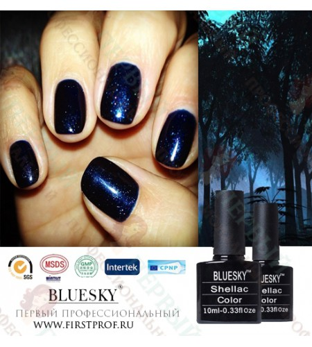 Bluesky Shellac 539 Midnight Swim
